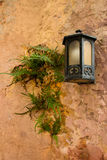 Lanterna em uma parede Imagem de Stock Royalty Free