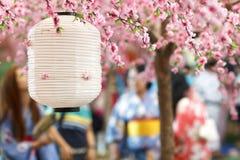Lanterna japonesa Fotografia de Stock Royalty Free