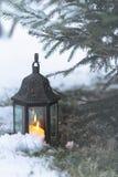 Lanterna leve sob um evergreen imagens de stock royalty free