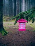 Lanterna na floresta II Foto de Stock Royalty Free