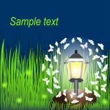 Lanterna na grama com borboletas e vaga-lume Foto de Stock Royalty Free