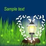 Lanterna na grama com borboletas e vaga-lume Imagens de Stock Royalty Free