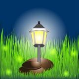 Lanterna na grama com vaga-lume e pedras Fotografia de Stock Royalty Free