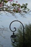 Lanterna nevoenta da manhã no mar Imagens de Stock