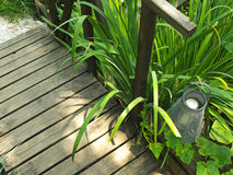 Lanterna no jardim Foto de Stock Royalty Free