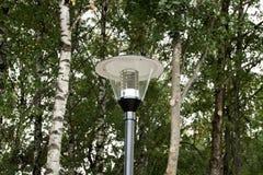 Lanterna no parque em um fundo das árvores Foto de Stock Royalty Free