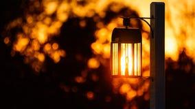 Lanterna no trajeto Fotografia de Stock