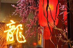 Lanterna rossa del nuovo anno cinese con il fiore della prugna nel centro commerciale immagine stock