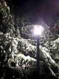 Lanterna sola Fotografie Stock Libere da Diritti
