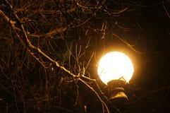 Lanterna solitária imagem de stock