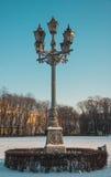 Lanterna sulla via di inverno Fotografia Stock Libera da Diritti
