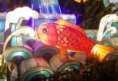 Lanterna vermelha colorida dos peixes Imagens de Stock