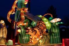 Lanterna vigorosa della seta della tigre Immagine Stock