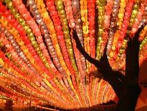 Lanternas de papel, templo de Jogyesa Foto de Stock Royalty Free