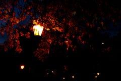 Lanternas europeias da rua na noite em Alemanha na queda Imagens de Stock
