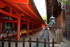 Lanternas japonesas do santuário xintoísmo foto de stock