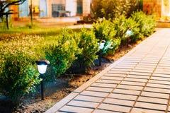 Lanternas postas Viola Flowerbed Illuminated Energy-Saving Solar da opinião da noite ao longo da calçada do trajeto fotografia de stock