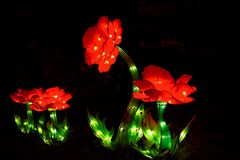 Lanterne asiatiche della peonia Fotografie Stock