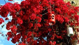 Lanterne casalinghe Fotografia Stock Libera da Diritti