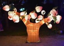 Lanterne cinesi Fotografia Stock