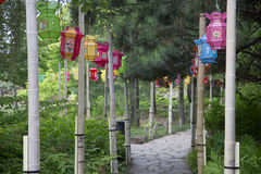 Lanterne cinesi del giardino Fotografia Stock