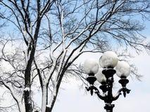 Lanterne couverte de neige, près d'un arbre, contre le ciel image libre de droits