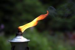 Lanterne dans un jardin Photo libre de droits