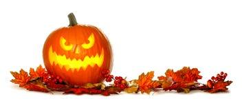 Lanterne de Halloween Jack o avec la frontière rouge de feuilles d'automne Image stock