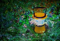 Lanterne de main dans des feuilles de myrtille, HDR Image libre de droits