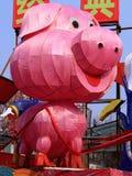 Lanterne de porc photographie stock