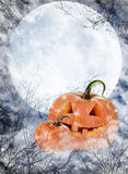 Lanterne de potiron de Halloween photographie stock