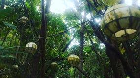 Lanterne della foresta Fotografia Stock