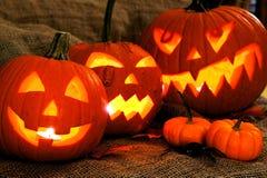 Lanterne di Halloween Jack O Immagine Stock