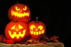 Lanterne di Halloween Jack o illuminate alla notte Fotografie Stock