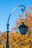 Lanterne en parc d'automne Images libres de droits