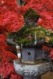 Lanterne en pierre traditionnelle japonaise couverte de la mousse photos stock