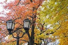 Lanterne forgiate nel parco sui precedenti degli alberi di autunno fotografia stock