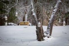 Lanterne glaciale blanche Photos libres de droits