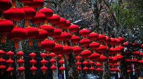 Lanterne rosse cinesi Fotografia Stock