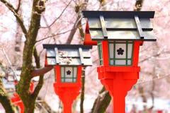 Lanterne rouge avec l'arbre de Sakura Image stock