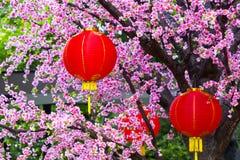 Lanternes chinoises Photos libres de droits