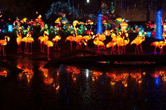 Lanternes chinoises de flamant reflétées dans un étang images stock