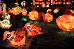 Lanternes chinoises, Hong Kong Images stock