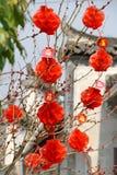 Lanternes chinoises rouges photo libre de droits