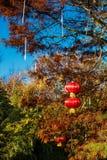 Lanternes chinoises, un symbole dans la tradition chinoise pour célébrer de bonnes périodes telles que la nouvelle année etc. image stock