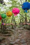 Lanternes dans une forêt à Busan photo libre de droits