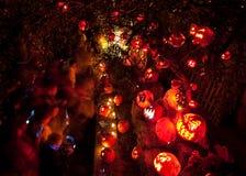 Lanternes de Jack O admirées par People Photo stock