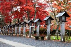Lanternes en pierre japonaises avec des feuilles d'automne photographie stock libre de droits