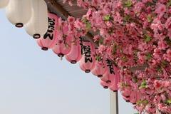 Lanternes japonaises images libres de droits