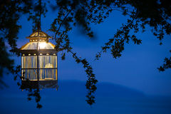 Lanternes pendant des arbres pour décorer à la cage à oiseaux de coucher du soleil Photographie stock